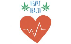 CBD oil used as a hypertension medication