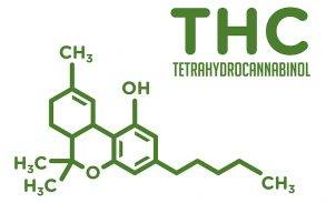 Find out which myths about THC, CBD and cannabinoids are true.