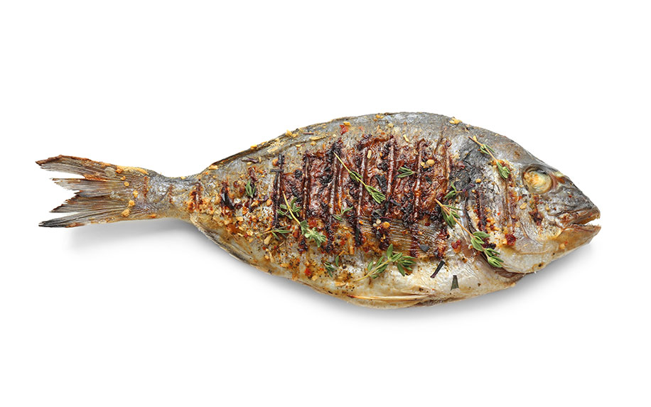 Find out how CBD can improve your fish leftovers.