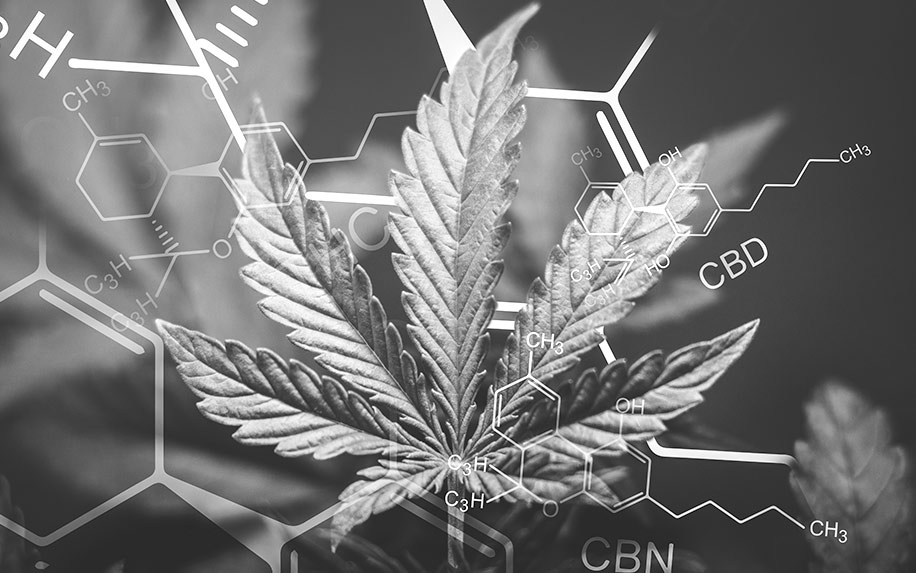 The differences between CBD and CBN