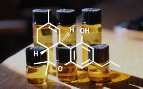 Tetrahydrocannabivarin and all you need to know about it