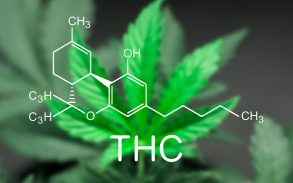 A quick guide to tetrahydrocannabinol