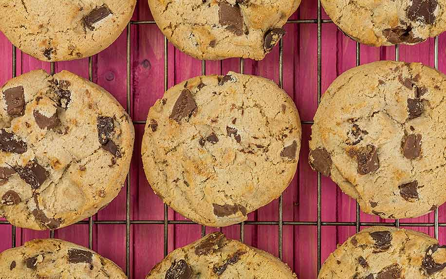 Belgian Dark Chocolate Chip Cannabis Cookies Biscuits Against a Pink Background