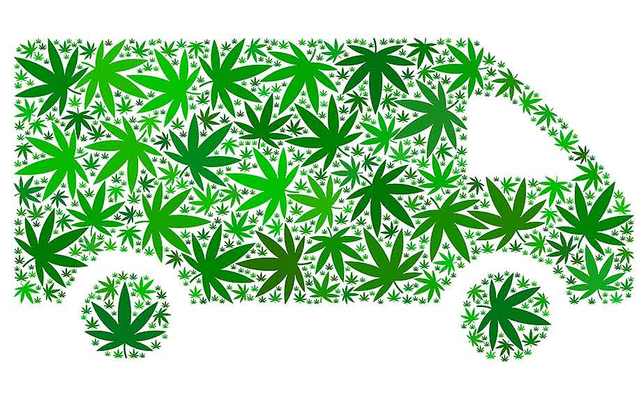 Delivery car collage of hemp leaves in different sizes and green tones.