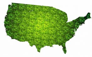United States of America map with green leaves
