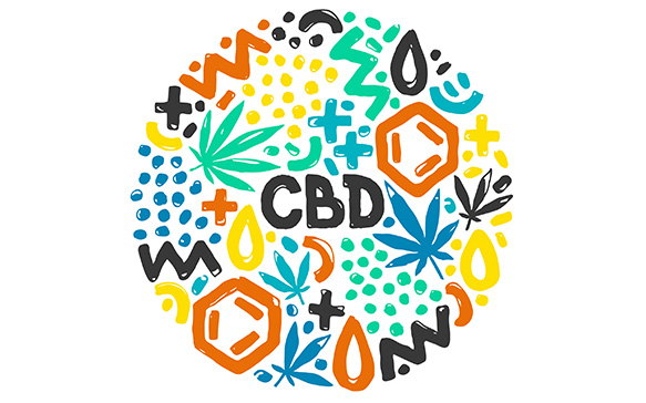 Cannabis, CBD and THC Basics