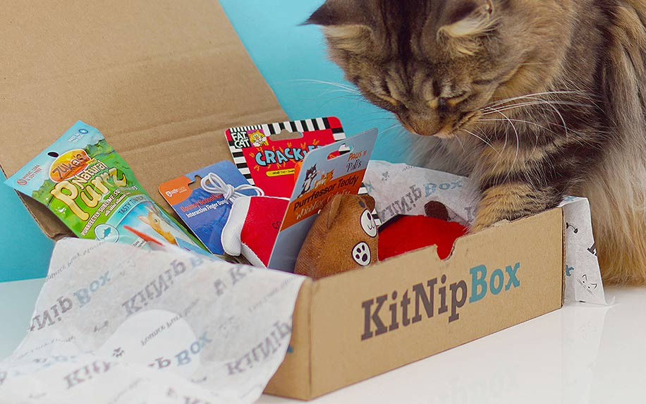 Monthly Subscription Box of Cat Toys, Treats and Goodies by KitnipBox.
