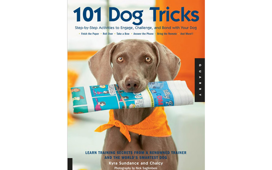 101 Dog Tricks by Kyra Sundance.