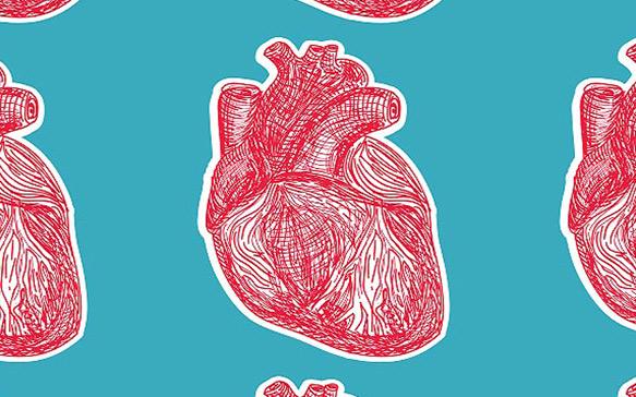 Heart: CBD and Cannabis