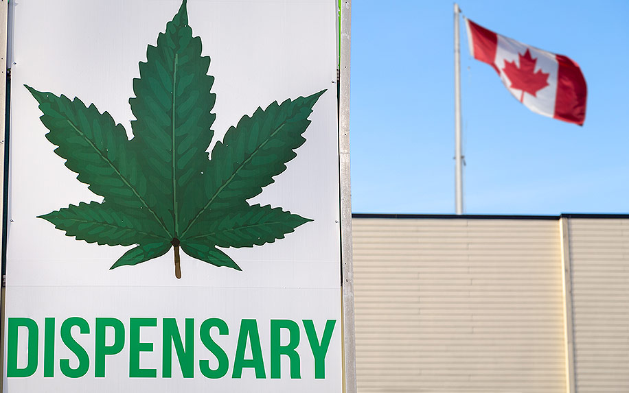 Reasons why cannabis sales in Canada have stopped.