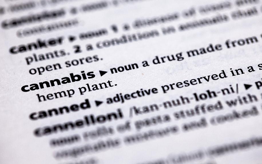 Key terms relating to cannabis, CBD and hemp