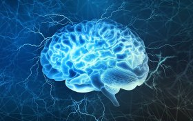 Cannabinoids Role in Human Brain AntiInflammation