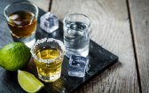 Cannabinoids as a Therapeutic Treatment for Alcoholism