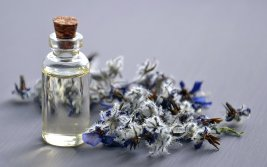 Cannabinoids Block Pain in Several Ways