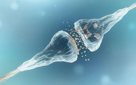 Marijuana Addiction and Cognitive Function – Can Cannabinoids Help?