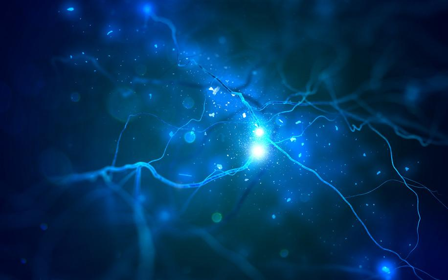 How Cannabinoids Protect the Nervous System