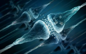 Therapeutic Potential of Cannabinoids to Treat Many Medical Conditions