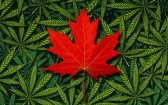 Traveling to Canada? What to Know About Canadian Cannabis Laws