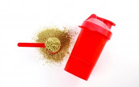 Why Hemp CBD Protein Has the Fitness Industry Intrigued