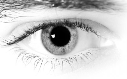CBD Oil and Your Eyes: What You Need to Know