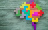 How the Endocannabinoid System Affects Your Brain's Health
