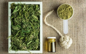 How to Go from Industrial Hemp to CBD Oil