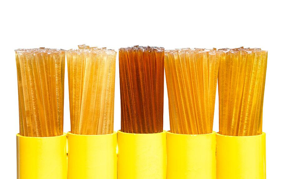 CBD Honey Sticks: What You Need to Know