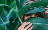 Does Marijuana Cure Glaucoma?