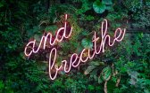 Thinking of Mixing Marijuana with Meditation to Combat Stress?