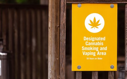 The Debate Over Smoking Cannabis in Public