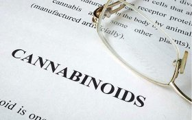 The Right Cannabinoids and Strains to Treat Autism