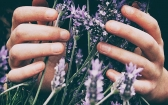 What Is Aromatherapy and What's the Theory Behind It?