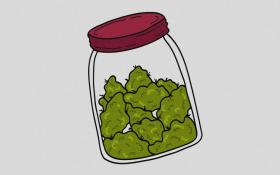 Top Cannabis Strains for Dementia and Alzheimer's Disease