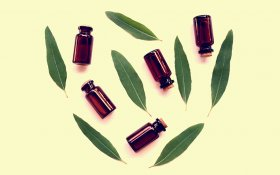 Could Topical CBD and Eucalyptus Oil Relieve Headaches?