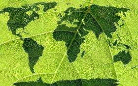 Where Is Cannabis Legal Around the World?