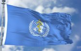 The WHO Just Recommended Relaxing Global Laws on Cannabis