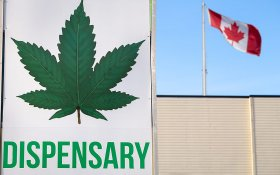 Legal Cannabis Sales in Canada Have Stalled — But Why?
