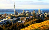 Will New Zealand Be the Next Country to Legalize Cannabis?