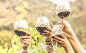 How Cannabis Is Changing the World of Wine